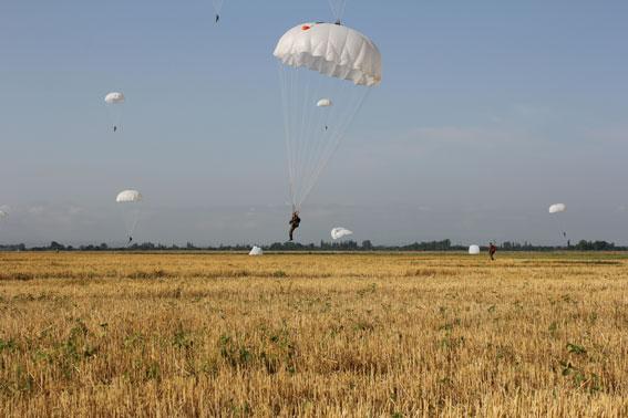 Десантники Поле парашюты